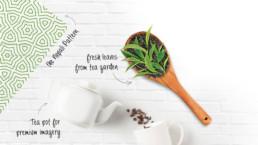 almond-branding-top-global-design-agency-mumbai-nepal-Tokla-Green-tea-premium-packaging-design