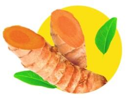 almond-branding-top-branding-agency-india-best-packaging-design-agency-mumbai-dabur-real-golden-milk-turmeric-haldi-doodh-ingredients-turmeric